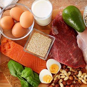 タンパク質600